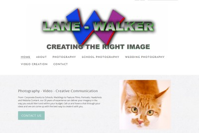 an example of the images created by TJ Lane
