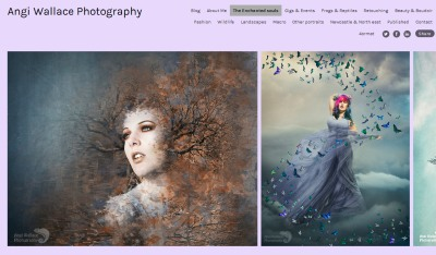an example of the images created by Angi Wallace
